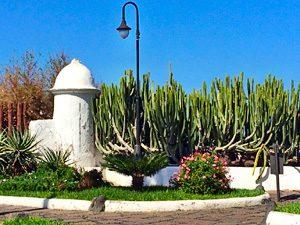 Garten um San Telmo