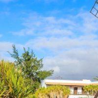 Mühle von Antigua