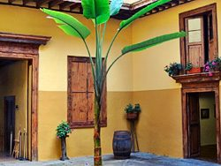 Innenhof eines Landhotels auf Teneriffa