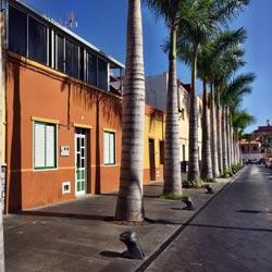 Fotos und Eindrücke aus Puerto de la Cruz