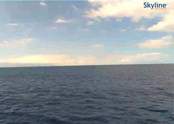 Katamaran Royal Delfin Webcam