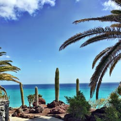 Bildergalerie von Costa Calma