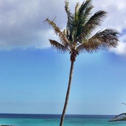 Klima in Costa Calma