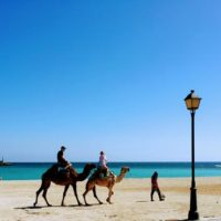 Kamelreiten am Strand