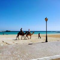 Segway fahren auf Fuerteventura