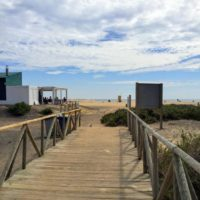 Weg zum Strand durch das Naturschutzgebiet