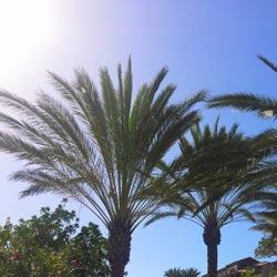 Klima und beste Reisezeit